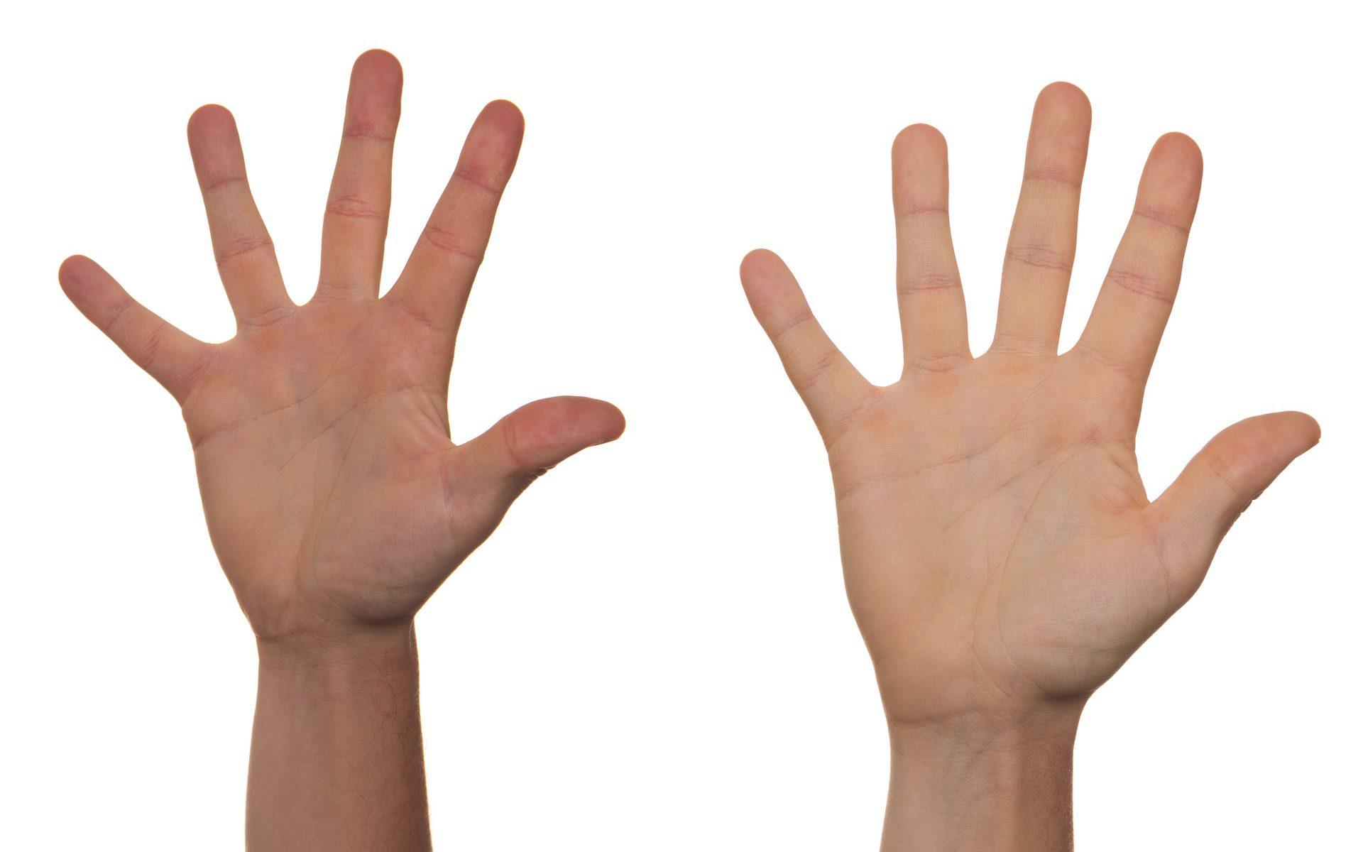 Mãos erguendo em sinal de voluntariado.